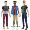 Кукла Кен Модник Barbie DWK44, 3 вида