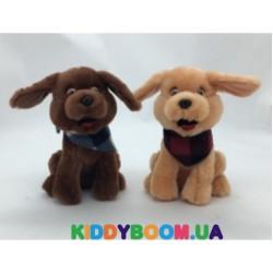 Мягкая игрушка Devik Toys Щенок зимний 21 см (2шт.  в асс.) M1622221