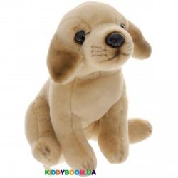 Мягкая игрушка Собачка Бой Fancy JD-1544Y