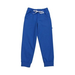 Спортивные штаны для мальчика р.98-140 Minikin 1517807