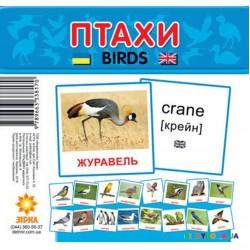 Карточки-мини Птицы (укр) Зірка 72753