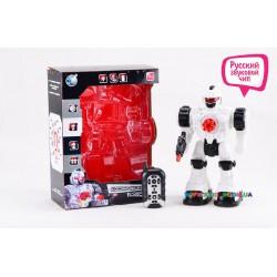 Робот-андроид на радиоуправлении Robico TT712A/B
