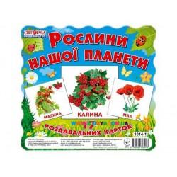 """Набор мини карточек """"Растения нашей планеты"""" рус. Ранок 13107006У"""