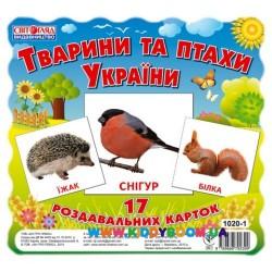 """Набор мини карточек """"Животные и птицы Украины"""" укр. Ранок 13107008У"""