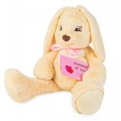Мягкая игрушка зайчик СМС-ка (35 см) Тигрес ЗА-0050